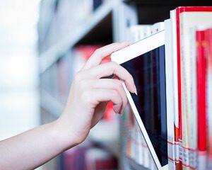 amontis-thumbnail-knowledge-86212227.jpg